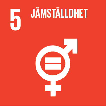 Sustainable-Development-Goals_icons-05-1.jpg