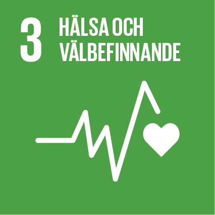 Sustainable-Development-Goals_icons-03-1.jpg
