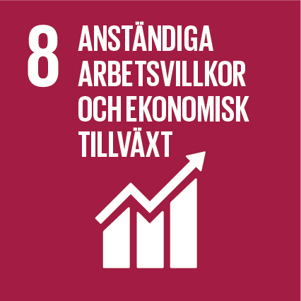 Sustainable-Development-Goals_icons-08-1.jpg